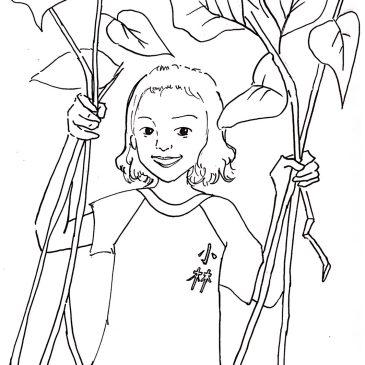 年底出版預告:小林大武壠民族植物專書